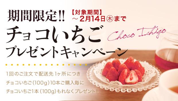 期間限定 チョコいちごプレゼントキャンペーン